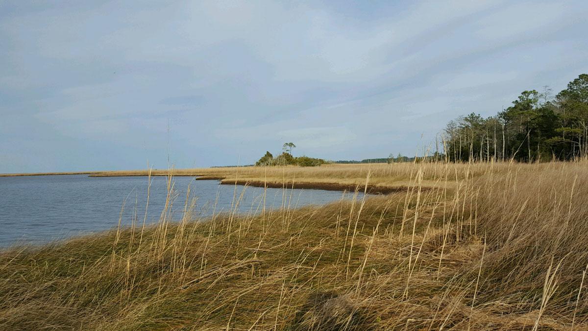 Compass Land Group - Coastal North Carolina Property